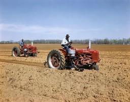 McCormick Farmall C and Farmall H Tractors