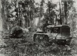 Logging with TD-40 Tractor