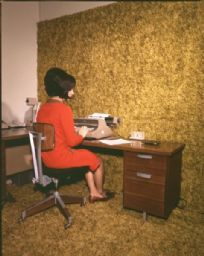 Woman at Desk with Carpeted Wall and Floor