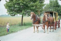 Children by Roadside and Horse-Drawn Carriage