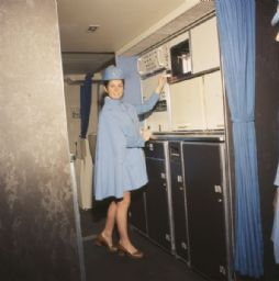 Flight Attendant in Boeing 747 Airplane