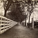 Capitol Fence and Pinckney Street