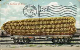 Tall-tale Postcard: A Carload of Corn