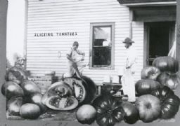 Tall-tale Postcard: Slicing Tomatoes