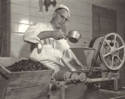Cranberry Processing