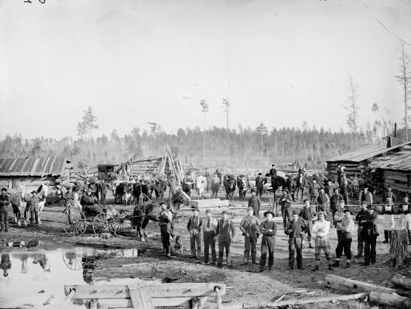 Logging Camp, B... Logging Camp History