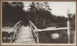 Bridge over Fish Creek
