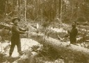 Two Lumbermen with Saw