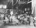 Children Working In Vegetable Cannery
