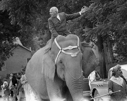 Philleo Nash on Elephant