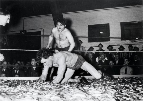 Smelt Wrestling