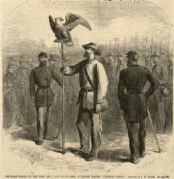 Drawing of Old Abe, the Civil War eagle, perched on a staff with uniformed Civil War soldiers.
