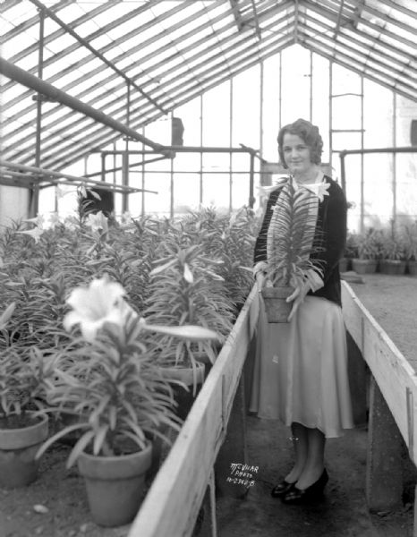 Ruth Jordan holding an Easter lily plant in Smith-Knox Floral Co. greenhouse, 2023 Sherman Avenue.