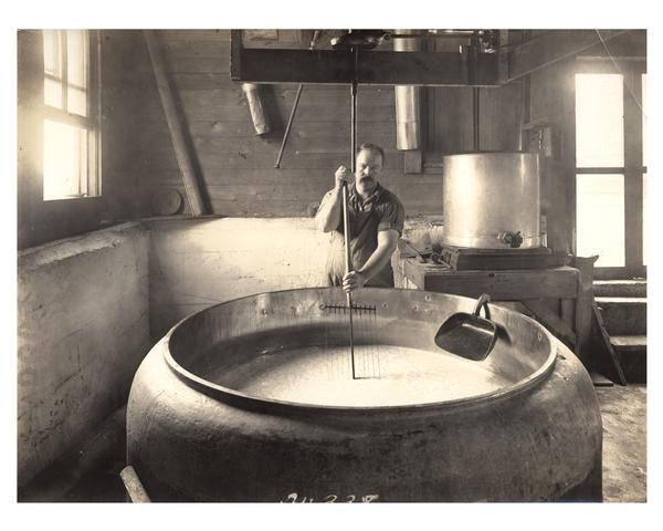 A worker cuts curd to make Swiss cheese at the Jorden Cheese factory.