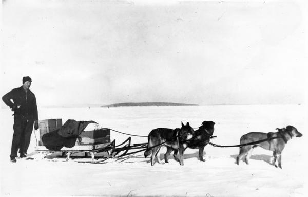 "Howard Russell standing next to his dog team pulling the ""Traino.""  Russell and the team are ready to leave Madeline Island with the U.S. Mail."