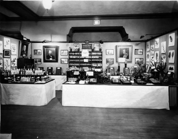 "View of the U.S. Pharmacopeial Convention's exhibit at the 1928 American Medical Association Convention, prepared and conducted by the College of Pharmacy of the University of Minnesota.  The exhibit features a display of various medications, plants, and several paintings (l to r: Samuel W. Melendy, William Proctor, Jr., and Edward Parrish). The exhibit received a ""Special Certificate of Merit"" for its educational displays."