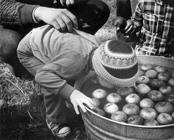 "Child ""bobs"" for apples at a ""Pioneer Day Festival."""