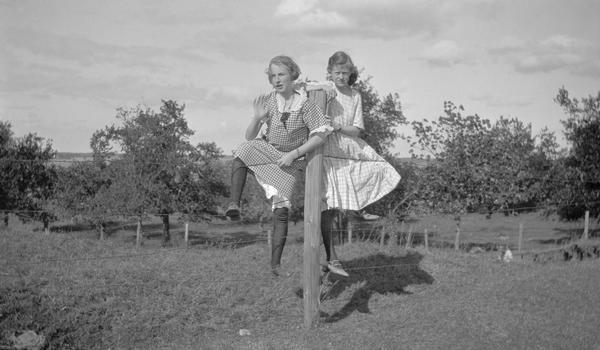 School friends Ethel and Eleanor fence-sit on a summer day.