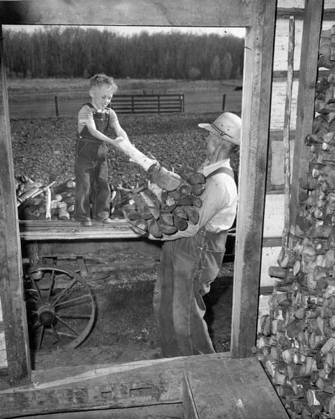 A young boy helps his grandfather unload a cart of split logs.