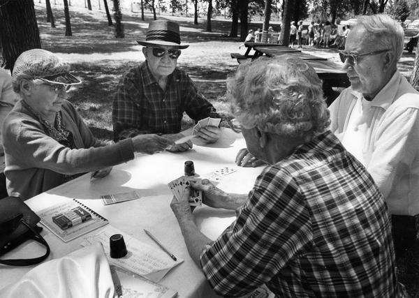 Group plays cards underneath the shady trees in Mitchell park.