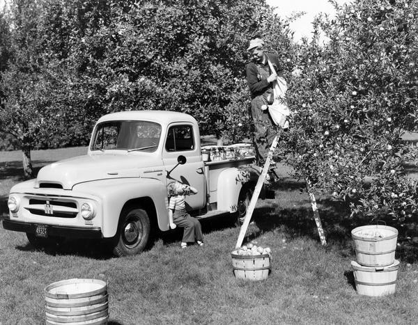 Publicity photograph showing a little girl sitting on the running board of an International R-series pickup truck and eating an apple while her father picks more from the top of a ladder.