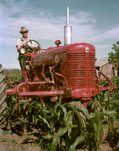 View towareds a farmer operating a stage I McCormick Farmall Super M tractor with cultivator in a cornfield.