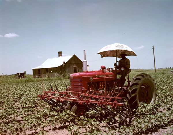 "View of an African American farmer cultivating a cotton field with a stage I McCormick Farmall Super MD tractor. The tractor is equipped with a cultivator and a sun shade that reads ""Delta Implement Co., Greenville, Miss."""
