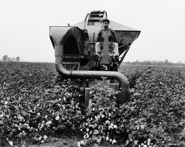 "African American field worker testing an experimental International Harvester cotton picker. Original caption reads: ""A close-up front view of the Harvester cotton picker showing how the row of cotton plants flows through the picking drums. This test field had a prolific leaf growth, but the picker nevertheless did an effective picking job. This photograph was taken during field operations on the Ohlendorf plantation near Osceola, Arkansas."""
