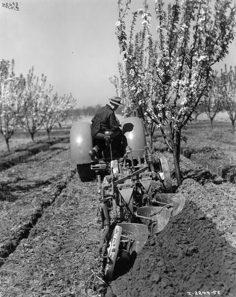Farmer H.C. Secord plowing an orchard field with McCormick-Deering O-4 tractor and a No. 82 three-furrow orchard plow. The plow was owned by the Canadian Canners Company. This photograph was taken on the company's Stamford Farm 22-E.