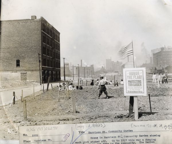 "Children working in an urban community garden. Original caption reads: ""Scene in Harrison Street Community Garden showing each plot staked off. Up to 1917 this was a dumping ground and an eyesore to the community. The Garden Campaign turned it into usefulness and a place for the children to spend their time doing something worth while."" A sign in the foreground reads: ""Honor the flag! Protecting this garden, as a part of the food supply of the nation; the Garden Bureau of Chicago."""