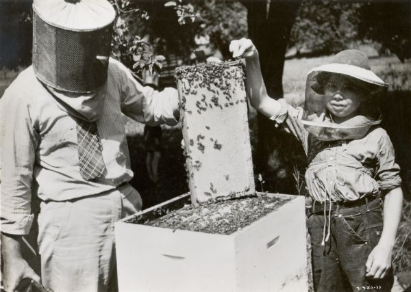 John Amos and Wilbur Allio wear protective veils and stand on either side of a hive of bees.