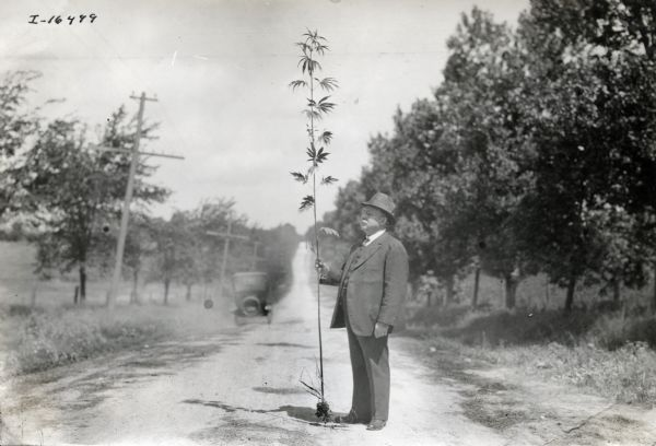 A man wearing a suit and hat stands in a dirt road holding a hemp plant, probably to be used in the production of binder twine.
