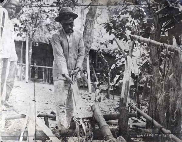 A man pulls fiber from the leaves of a manila plant in the Philippine Islands. Other men looks on over his shoulder, and a dwelling or other structure is in the background.