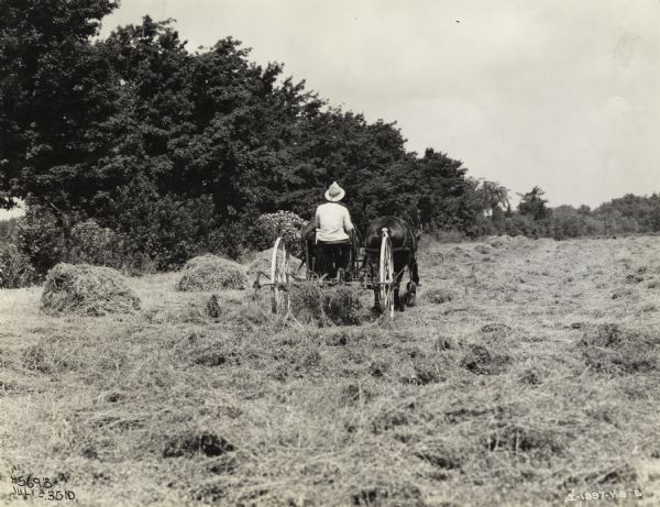 Farmer in a field with a horse-drawn McCormick-Deering hay tedder.