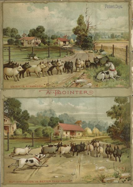 "Back cover of catalog featuring two illustrations with the title: ""A Pointer."" The top illustration, captioned ""Union is Strength,"" shows a dog lying in the grass at a fence row, while a large group of swine stands in the road staring. The bottom illustration, captioned ""But Discretion is better than Valor,"" shows the dog running after the swine who are running back down the road towards a farm."