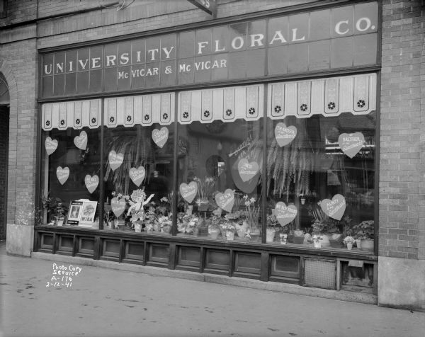 Valentine floral display window at University Floral Company, 747 University Avenue.  Owned by Dea McVicar and his son Angus McVicar.