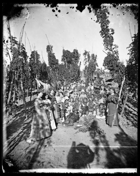 Hop harvesters, mostly female, stand with hops, probably on the farm of Knudt Heimdal. Many of the harvesters have hop wreaths on their heads. Two men with hats lie in front of the group. The brim of the man on the left is decorated with hops. Note the shadow of Andreas Larsen Dahl in the foreground.