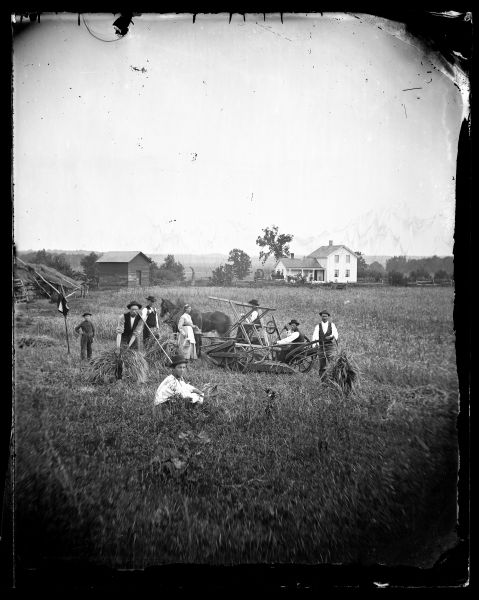 A crew of farm laborers take a break from harvesting wheat while a young woman offers food and drinks. They are posed in front of a reaper with the family farmstead in the background.  In the foreground, a horse and people, mostly men, stand in a field harvesting grain near a reaper.  A boy stands near a flag.  In the background is a wooden structure, possibly for storage, an upright and wing frame house, a split-rail fence, horse-drawn vehicles and more people.