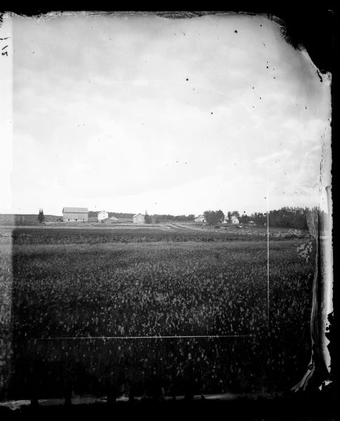 View through a field with barns and a house surrounded by fences.