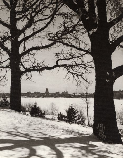 View of the Wisconsin State Capitol from Lake Road, across Lake Monona. Two large trees frame the view of the Capitol.