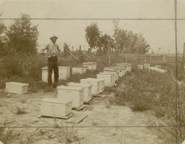 Roy Tait standing next to some of his beehives.