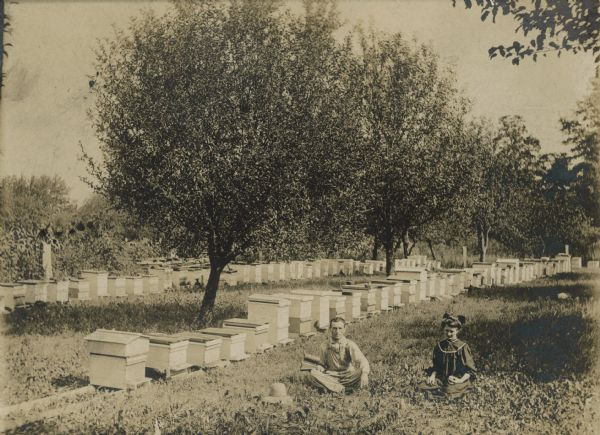 A man and woman sit in a field near a large stand of beehives.