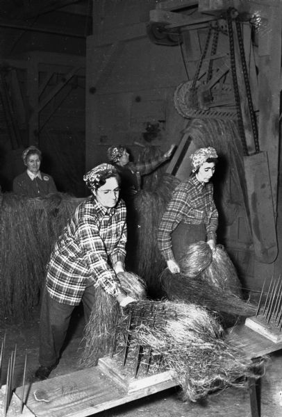 Lula Lawrence, lsft, and Esther Gunderson combing hemp fibers.  In the background two women sort hemp fiber bundles for rope and cordage during World War II.