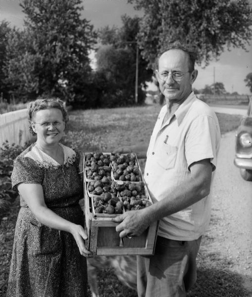 Local fruit farmers Mr. and Mrs. Martin Kapec, Route 2, Madison, display a crate of home grown strawberries the size of golf balls.