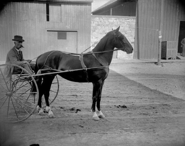 Man in a sulky, probably Eugene Greenlee, the Superintendent of Water Works, possibly pulled by a race horse.