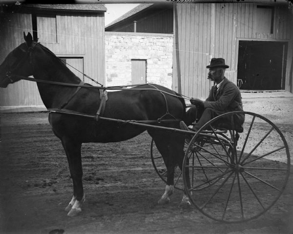 Man posing in a sulky, probably Eugene Greenlee, the Superintendent of Water Works, possibly pulled by a race horse. Note the solid tires. When pneumatic tires came into use on bicycles they were also used on sulkies. They improved racing and broke time records. Black River Falls had many race horse owners and people were enthusiastic. They were a principal feature at county fairs. In Black River Falls, John Peterson, Fanny Whitestone, and Mimmie Whitestone were owners. There was competition with a horse from Sparta called Poco Tempe, and with a man named Catura, who had several horses from Durand.