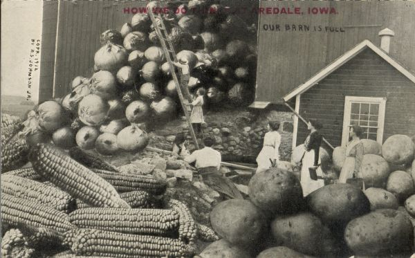 "Several women and a man are outside of a barn, which is overflowing with giant onions, corn, and potatoes. A ladder is placed against the large stack of onions, and the man and one of the women are climbing to the top of the pile. Red text imprinted in the upper portion of the image reads, ""How we do things at Aredale, Iowa."""