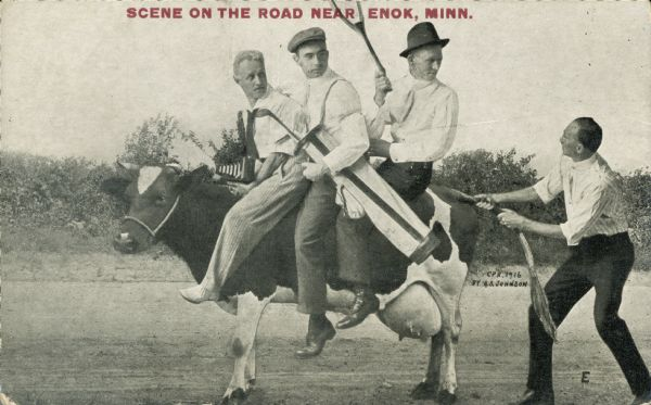 "Three men ride a dairy cow on a dirt road, while a fourth pulls at the cow's tail. Of the three men, one is holding a tennis racket, one is holding a golf bag, and one has a camera in his lap. Red text at the top of the image reads, ""Scene on the road near Enok, Minn."""