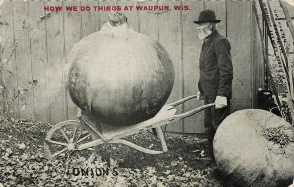"An elderly, bearded man hauls a giant onion using a dolly.  The man is wearing a black hat and white work gloves.  The background shows the side of a barn.  Red text in the upper portion bears the inscription, ""How we do things at Waupun, Wis."""