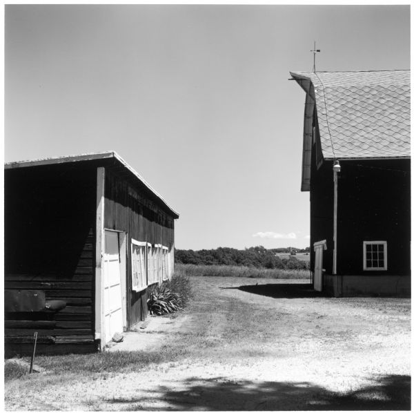 The barn and chicken house of the Quinney farm.